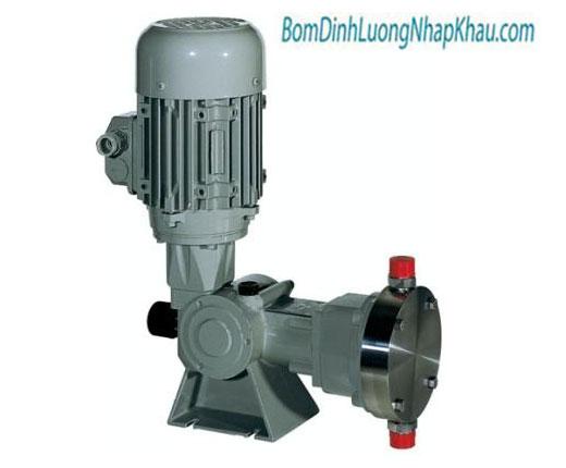 Máy bơm định lượng kiểu màng cơ khí Type D 100N-70/B-13